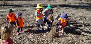 Children using magnifying glasses to find bugs in the bush