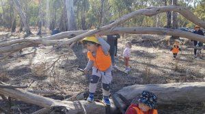 Child climbing under tree branch